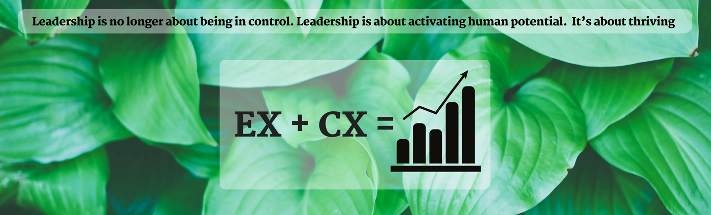 EX + CX = Sustained Growth